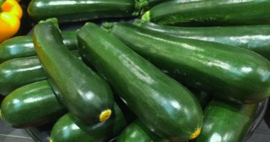 jersey courgettes